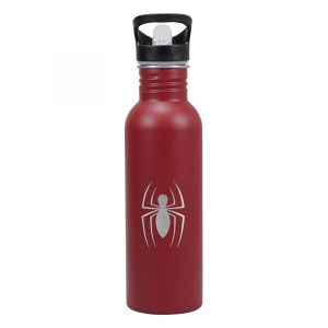 [Spider-Man: Water Bottle: Great Power (Product Image)]
