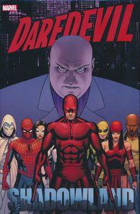 [Daredevil: Shadowland Omnibus (Hardcover) (Product Image)]