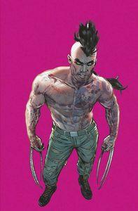 [Wolverine #13 (Jimenez Pride Month Virgin Variant Gala) (Product Image)]