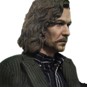 [Harry Potter: Order Of The Phoenix: Deluxe Action Figure: Sirius Black (Product Image)]