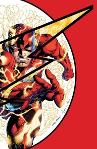 [Absolute Flashpoint (Hardcover) (Product Image)]