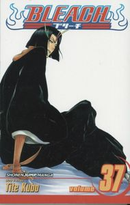 [Bleach: Volume 37 (Product Image)]