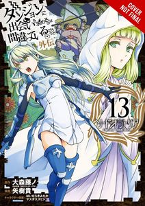 [Is It Wrong Pick Up Girls In A Dungeon? Sword Oratoria: Volume 13 (Product Image)]