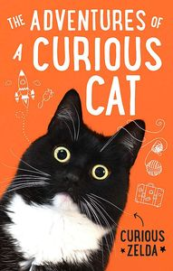 [The Adventures Of A Curious Cat (Product Image)]