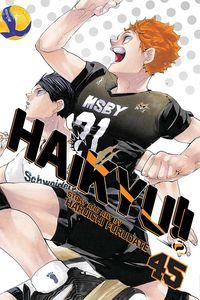 [Haikyu!!: Volume 45 (Product Image)]