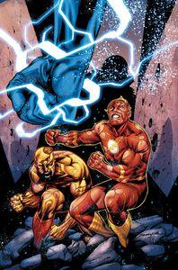 [Flash #755 (Product Image)]