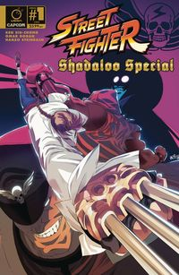 [The cover for Street Fighter: Shadaloo Special (Cover A Steinbach)]