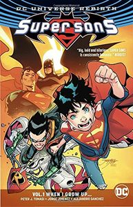 [Super Sons: Volume 1: When I Grow Up (Rebirth) (Product Image)]
