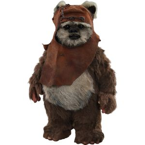 [Star Wars: Return Of The Jedi: Hot Toys Action Figure: Wicket (Product Image)]