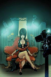 [Elvira: Mistress Of Dark #12 (Castro Virgin Variant) (Product Image)]