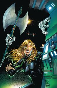 [Robyn Hood: The Hunt #2 (Cover D Diaz) (Product Image)]