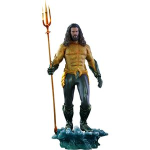 [Aquaman: Hot Toys Action Figure: Aquaman (Product Image)]
