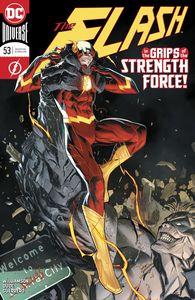 [Flash #53 (Product Image)]