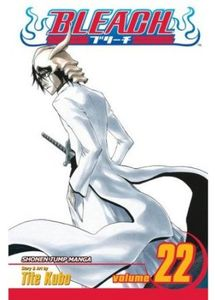 [Bleach: Volume 22 (Product Image)]