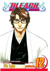 [Bleach: Volume 12 (Product Image)]