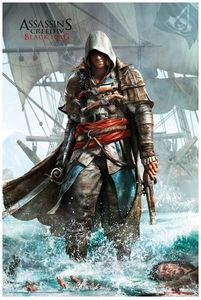 [Assassin's Creed IV: Black Flag: Poster: Shore (Product Image)]