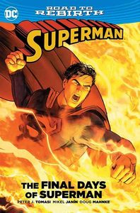 [Superman: The Final Days Of Superman (Product Image)]