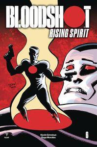 [Bloodshot: Rising Spirit #6 (Cover C Haspiel (New Arc)) (Product Image)]