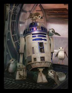 [Star Wars: The Last Jedi: Framed Print: R2-D2 & Porgs (Product Image)]