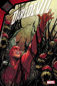 [Daredevil #26 (Kib) (Product Image)]