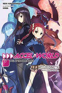 [Accel World: Volume 20 (Light Novel) (Product Image)]