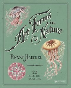 [Ernst Haeckel: Art Forms In Nature: 22 Pull-Out Posters (Product Image)]
