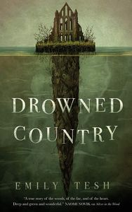 [Greenhollow Duology: Book 2: Drowned Country (Product Image)]