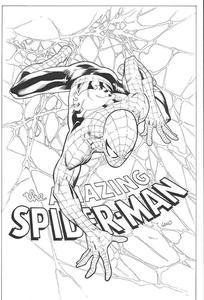[Amazing Spider-Man #798 (Greg Land Charity B&W Variant) (Product Image)]