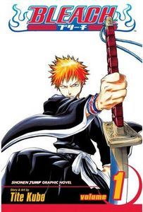 [Bleach: Volume 1 (Hardcover) (Product Image)]