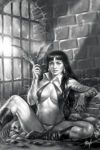 [Vampirella #11 (Parrillo Virgin Black & White Variant) (Product Image)]