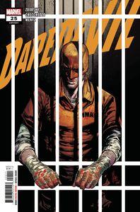 [Daredevil #25 (Product Image)]