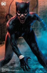 [Catwoman #11 (Variant Edition) (Product Image)]