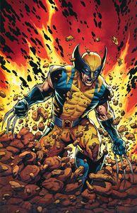 [Return Of Wolverine #1 (McNiven Current Costume Virgin Variant) (Product Image)]