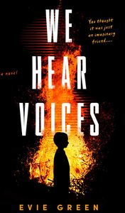 [We Hear Voices (Hardcover) (Product Image)]