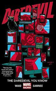 [Daredevil: Volume 3: Daredevil You Know (Product Image)]