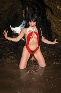[Vengeance Of Vampirella #16 (Cosplay Virgin Variant) (Product Image)]