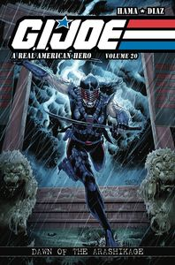 [Gi Joe: A Real American Hero: Volume 20 (Product Image)]