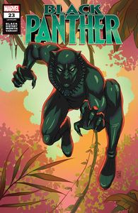 [Black Panther #23 (Souza Black Panther Black History Variant) (Product Image)]