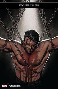 [Punisher #6 (Product Image)]