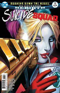 [Suicide Squad #13 (Product Image)]