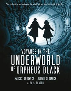 [Voyages In The Underworld Of Orpheus Black (Hardcover Signed Edition) (Product Image)]
