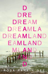 [Dreamland (Hardcover) (Product Image)]