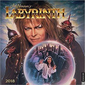 [Labyrinth: 2018 Wall Calendar (Product Image)]