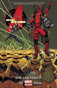 [Secret Avengers: Volume 2: Labyrinth (Product Image)]