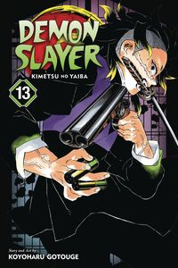 [Demon Slayer: Kimetsu No Yaiba: Volume 13 (Product Image)]