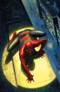 [Peter Parker: Spectacular Spider-Man #300 (Alex Ross Variant Leg) (Product Image)]