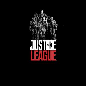 [Justice League: T-Shirt: Team Shot (Product Image)]