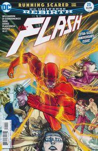 [Flash #25 (Product Image)]