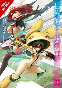 [The World's Strongest Rearguard: Labyrinth Country's Novice Seeker: Volume 3 (Product Image)]