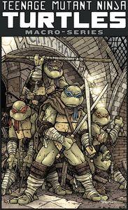 [Teenage Mutant Ninja Turtles: Macroseries (Product Image)]